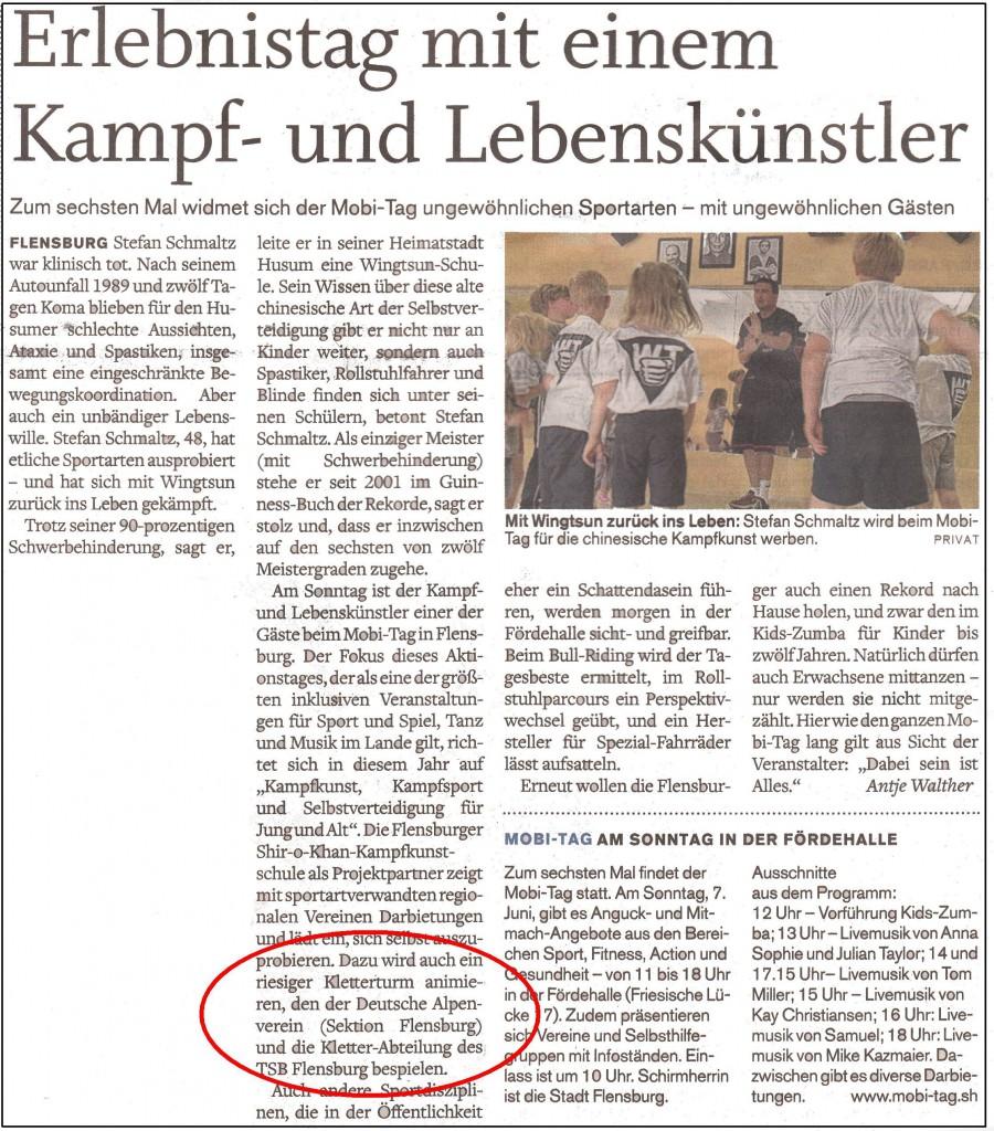 2015-06-06_FL_Tageblatt_MOBI-Tag