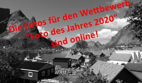 Artikelbild zu Artikel Foto des Jahres 2020