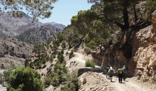 Artikelbild zu Artikel Marokko – Hüttentrekking im Atlas-Gebirge